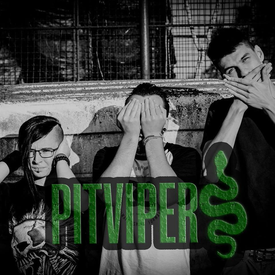 Pitvipers zenekar43_6335553120717766656_n