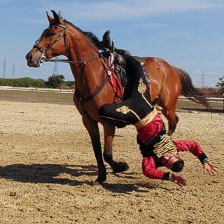 Lovas akrobatika