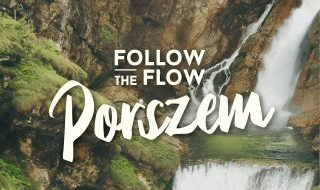 folow the flow- porszem