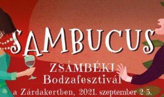 Sambucus bodza Zsámbék